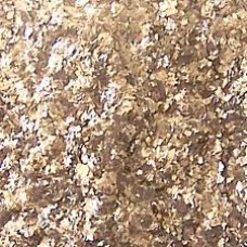 Bronze Mica Large Flakes 7 oz