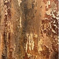 Textures / Crackles